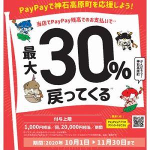 PayPay支払いで最大30%還元!神石高原町×PayPayのキャンペーンは10月1日から!