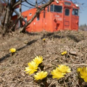 春を感じた日…