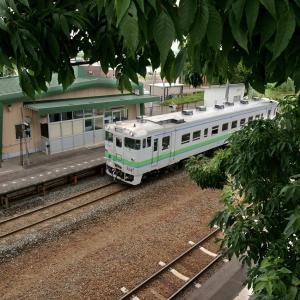 ヤチダモの駅…