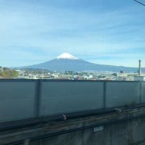 東京・横浜出張