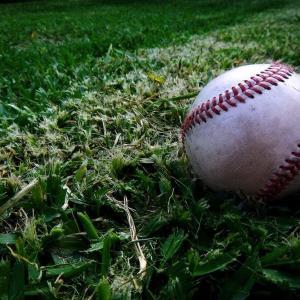 プロ野球の万年2軍ピッチャーが野球のレベルが低い世界に転生して無双する小説を書こうと思うんやが