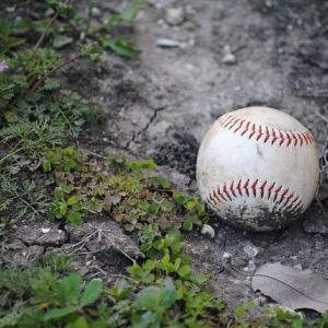 プロ野球観戦を始めたばかりの頃に理解できなかったことwwwwwww