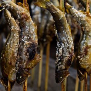 『鮎の塩焼き』とかいうクソうまい食い物wwwwww