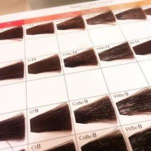 伊那市 ウィッグ 抗癌剤治療後の気になる白髪を染めたい