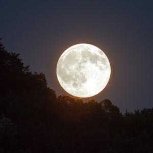 中秋の名月と満月の願い事