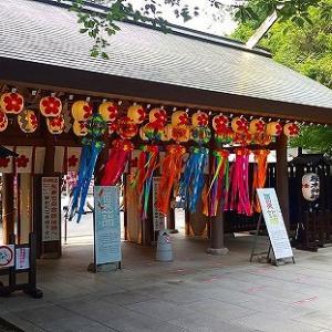 櫻木神社~釣りおみくじ~