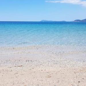 plages label Pavillon bleuブルーフラッグビーチ@南仏イエール