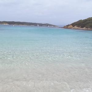 Port-Cros 南仏イエール・ポルクロル島ハイキング @南仏イエール から