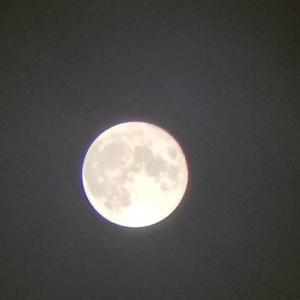 今夜は仲秋の名月&満月:*:・'°☆