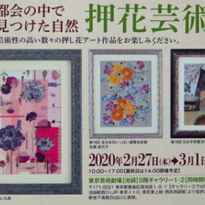 押花芸術展 明日からです。