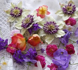 花、いろいろ