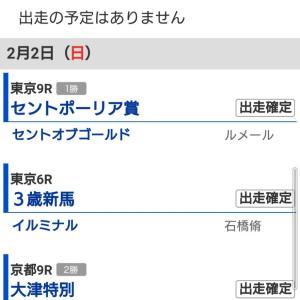 イルミナルのデビューがハヤクナル!