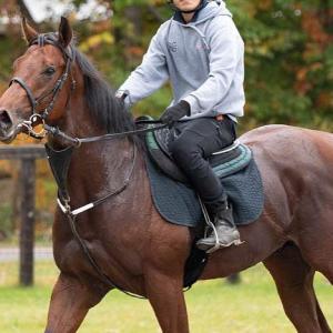 ドラ1馬シラクーザが未勝利引退