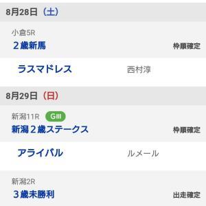 8月最終決戦はデビュー戦、3歳未勝利戦、新潟2歳S