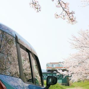 愛車×桜×鉄。