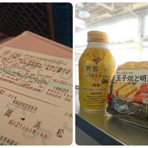 『JR東海&16私鉄乗り鉄☆たびきっぷ』の旅⑤~樽見鉄道
