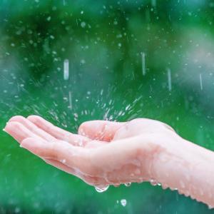[GMTC]梅雨に対処する私たちの姿勢(韓国の梅雨入り/梅雨対策)