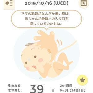 34w3d  今日はわりかし元気!!