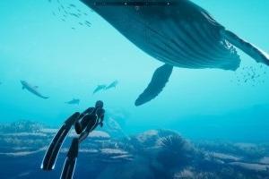 「海が綺麗で気持ち良いゲーム」ってなにがある?