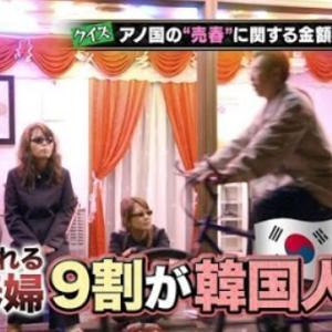 【悲報】韓国人「もし韓国人女性の売春婦が27万人だとしたら、一体どの程度の割合でしょうか?」→「日本に大勢遠征している」 韓国の反応