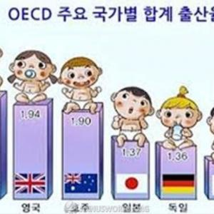 韓国人「韓国は今が最盛期で、これからは滅びるだけなのでしょうか?人口が減れば中国に吸収されてしまうのでしょうか?」 韓国の反応