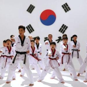 韓国人「テコンドーは空手のパクリらしいですが、テコンドーが空手道よりオリンピックの種目に先に選ばれた理由は何ですか?」 韓国の反応