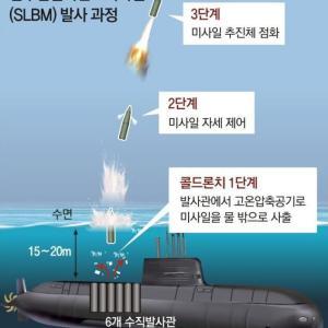 韓国人「韓国は名実共に大国ですね、日本は韓国を見てぶるぶる震えているのでしょうか?」 韓国の反応