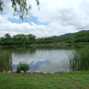 池のまわりに
