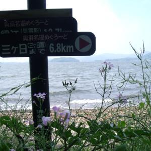 海が見たくて