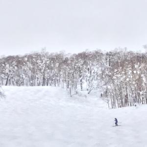 ルスツスキー場、春スキーのようです