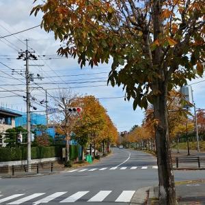 『寺岡』にある、ナゾの幅員な歩道。