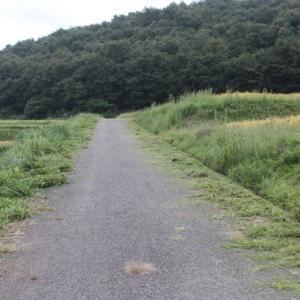【 道の草刈り 】
