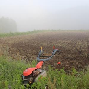 【ダブルで終了】①耕す ②プール育苗移動
