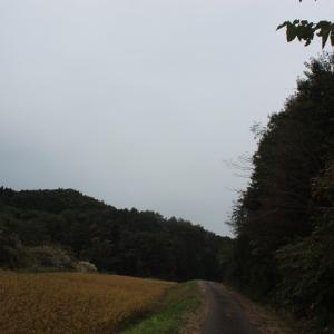 【 雨を覚悟で 】稲刈りへ