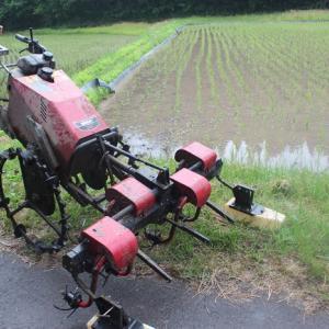 【 機械除草 始めています。 】