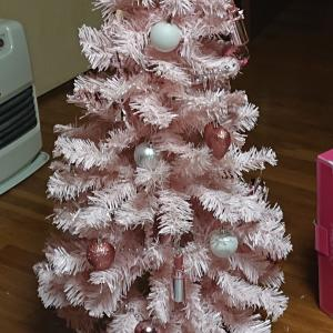 早くもクリスマス(笑)