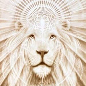 明日はライオンズゲート・・・