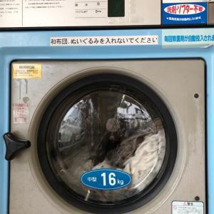晴れの日は洗濯