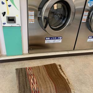 実録 ロゴバ・キリムのカーペットのお洗濯、やればできるものです