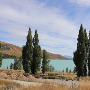ベストコンディションのテカポ湖をあとにし、マウントクック国立公園へ