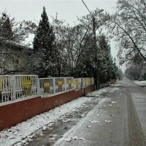 初雪とクルマ事情