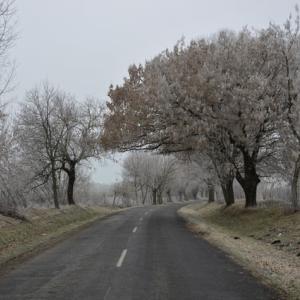 初雪とクルマ事情(2)