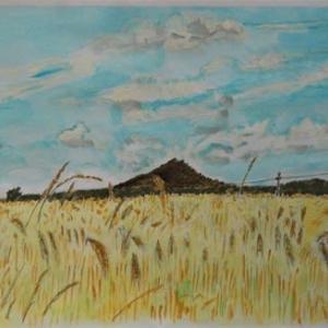 バラトン湖をスケッチ(11) 麦畑とひまわり畑