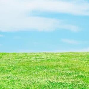 うつせみ闘病記「『今日は命日』とこれからの不安」