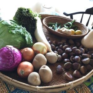 大切に食べたい野菜達