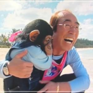 先日、志村どうぶつ園のテレビを見て、涙が出て止まりませんでした