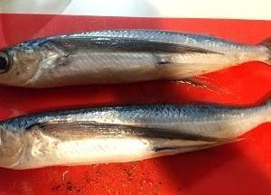 最近、魚をよくさばきます