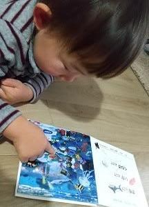 2歳児が今はまっている絵本