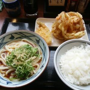 新発田方面をチョイポタ