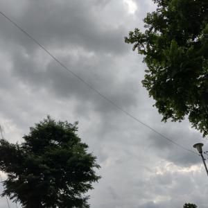 雨の写真!